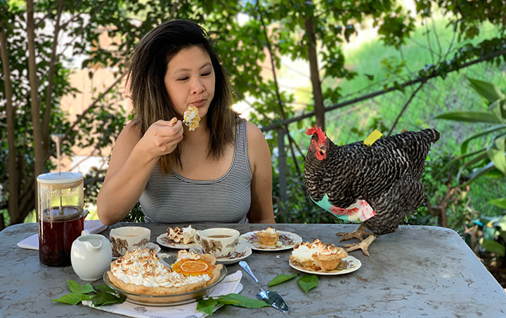 eating pie with a chicken at the table