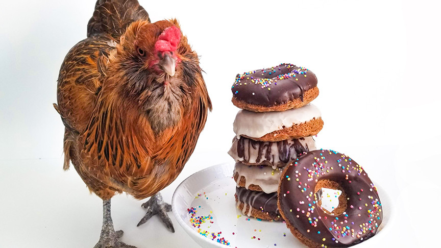 chicken with donuts