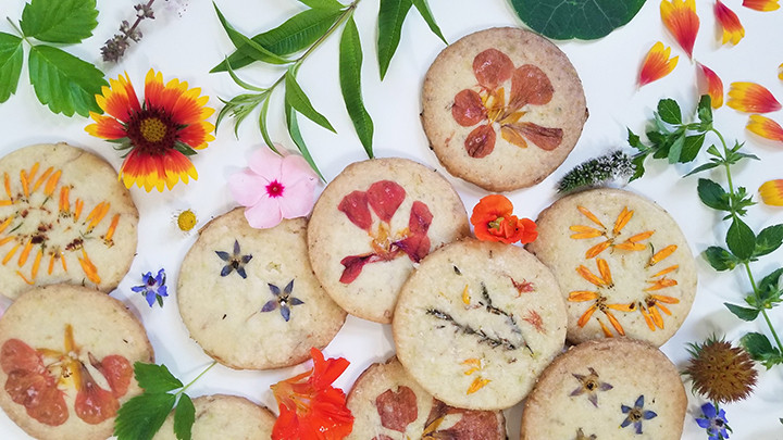 pressed flowers on shortbread cookies
