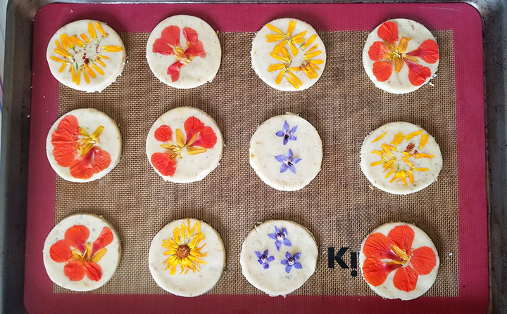 flowers pressed on unbaked cookies on a baking sheet