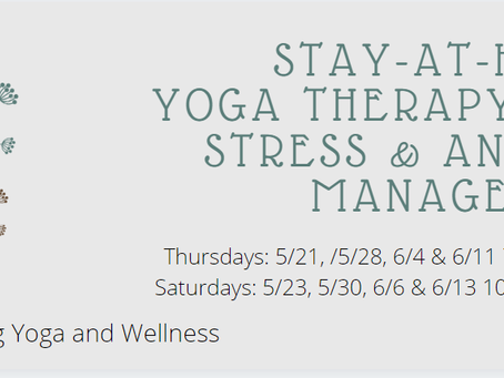 Stay-At-Home Yoga Therapy for Stress and Anxiety Management Workshops