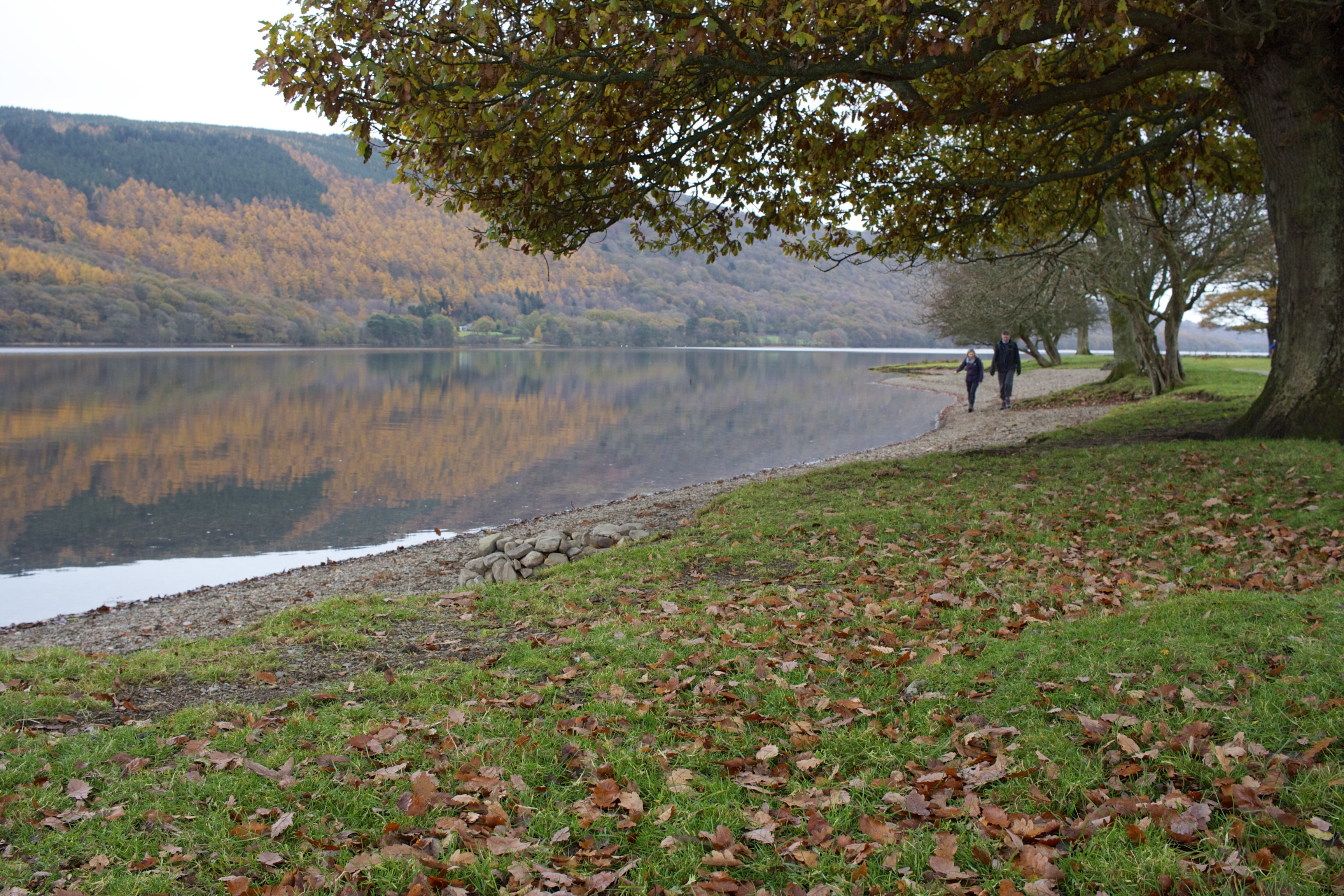walk along Coniston Water