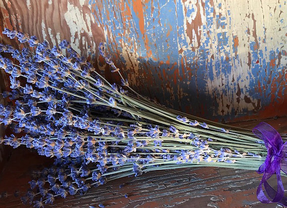 Dried Long Stemmed Lavender