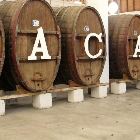 Tacama-The oldest vineyard in South America
