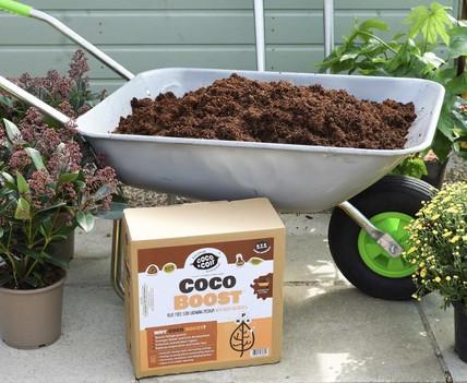 New Coco Boost