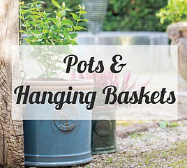 POTS AND HANGING BASKETS.jpg