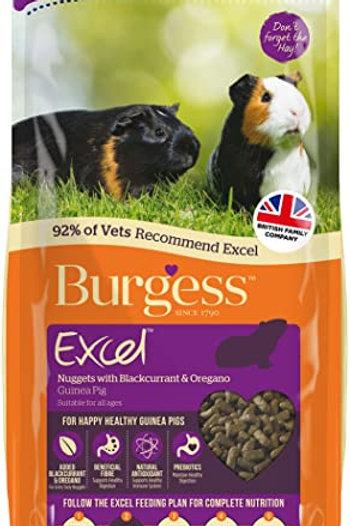 Burgess Excel Guinea Pig Blackcurrent & Oregano 2kg