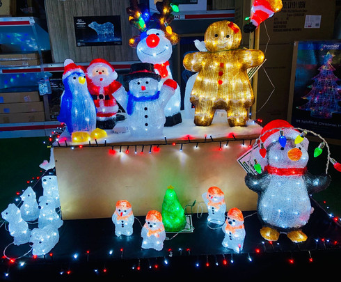 christmas 2021 lights.jpeg
