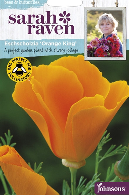Mr Fothergills Seed SR/WL Eschscholzia