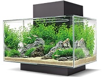 fluval edge png.png