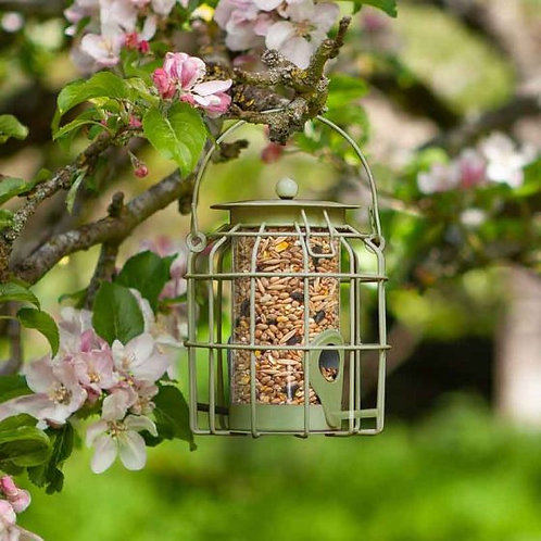 Compact Squirrel Proof Seed Feeder
