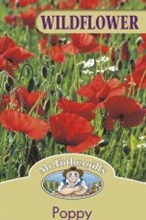 Mr Fothergills Seeds WF Wildflower
