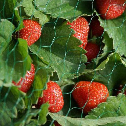 Smart Garden Netting - Green 15mm 2x10m