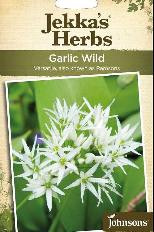 Mr Fothergills Seeds Garlic