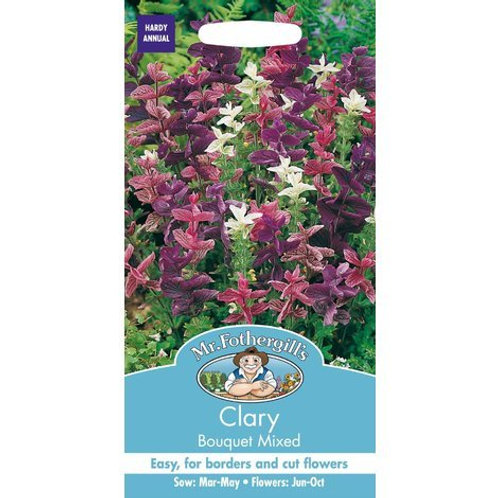 Mr Fothergills Seeds Clary Bouquet Mix