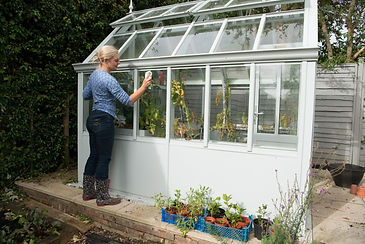 greenhouse cleaning.jpg