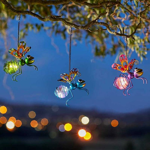 Bug Lights - Solar Lanterns