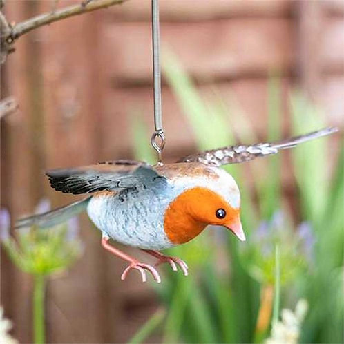La Hacienda Robin In Flight