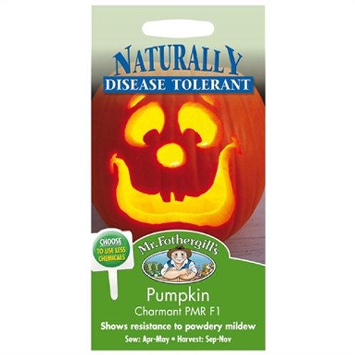 Mr Fothergills Seeds Pumpkin Charmant