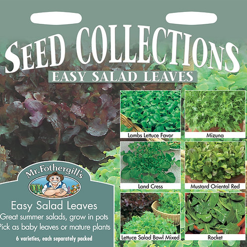 Mr Fothergills Seeds Easy Salad Leaves