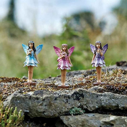 Elvedon Forest Fairies