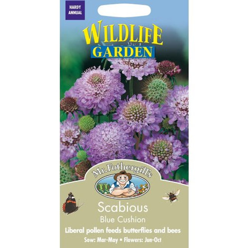 Mr Fothergills Seeds Scabious