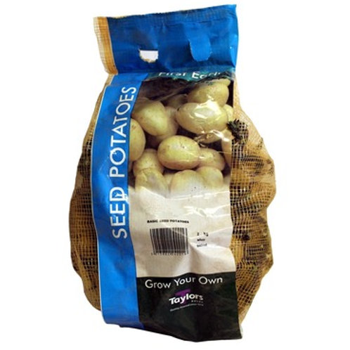 Taylors Bulbs Seed Potatoes 2kg