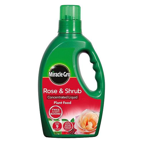 Miracle Gro Rose & Shrub 1L