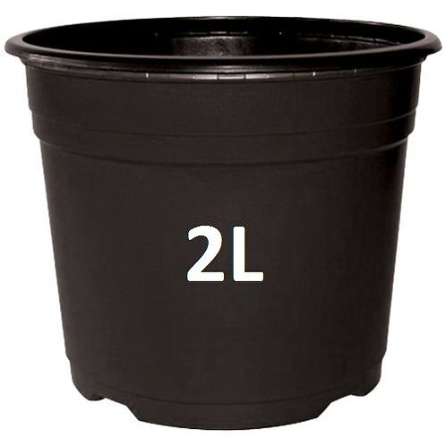 Black Plastic Pot 2l