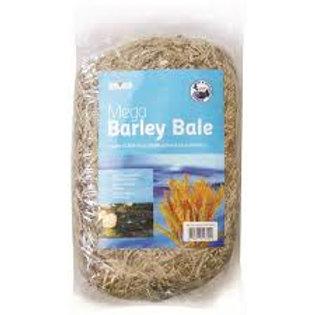 Bermuda Mega Barley Bale