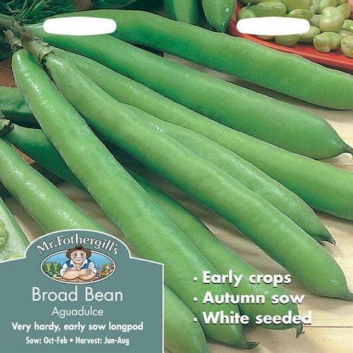Mr Fothergills Seeds Broad Beans