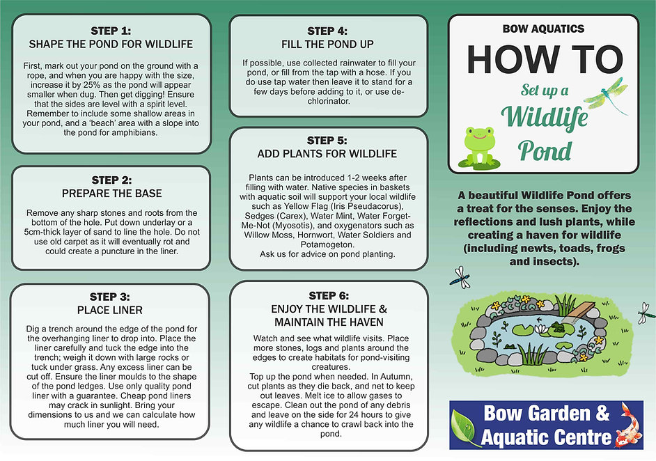 FRONT PAGE SET UP YOUR OWN POND2.jpg