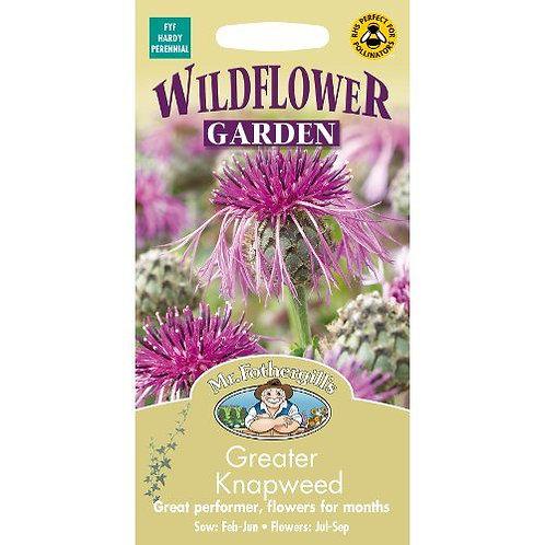 Mr Fothergills Seeds WF Greater Knapweed