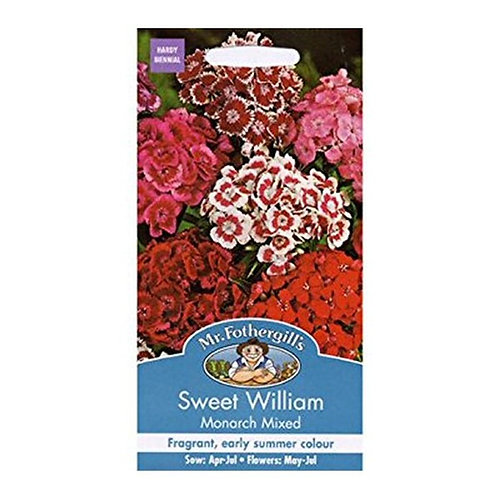 Mr Fothergills Seeds Sweet William Monarch Mix