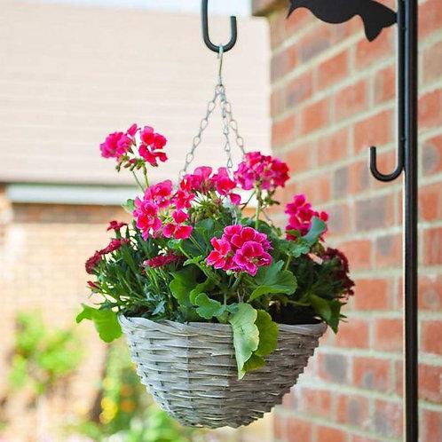 Sable Willow Hanging Basket