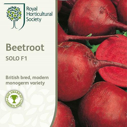 Mr Fothergills Seed Beetroot