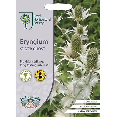 Mr Fothergills Seeds Eryngium