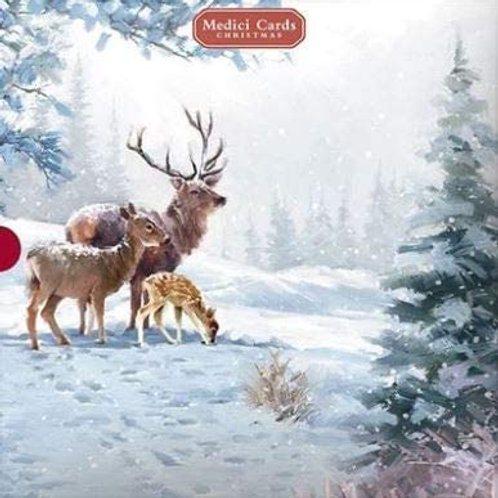16 Christmas Cards Deery Family & Squirrel