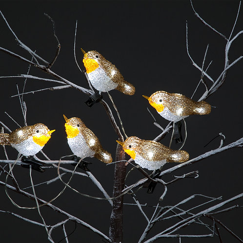 Snowtime 5 Acrylic Robin Lights With 30 Ice White LEDs