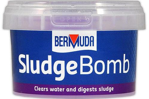 Bermuda Pond Sludge Bomb
