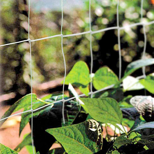 Pea And Bean Netting 2m Per Metre