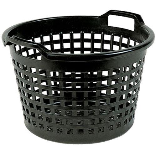 Aquatic Basket Jumbo Lily