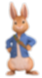 peter rabbit png.png