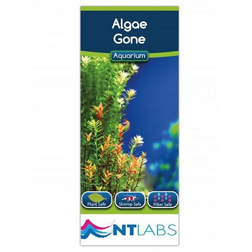 NT Labs Algae Gone