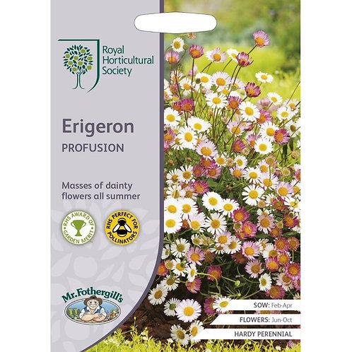 Mr Fothergills Seeds Erigeron