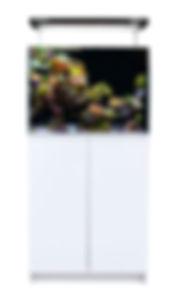 aquaone mini reef.jpg