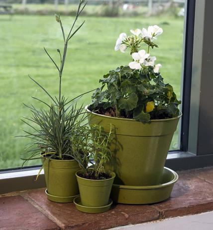 Eco-Friendly Bamboo Pots