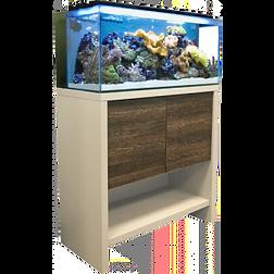 Fluval M90 Reef Complete Setup