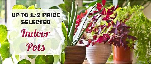 indoor POTS sale banner.jpg