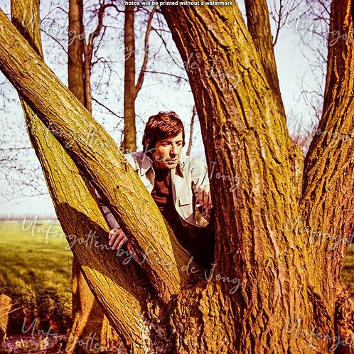 Leonard Cohen  04 | 50cm x 50cm